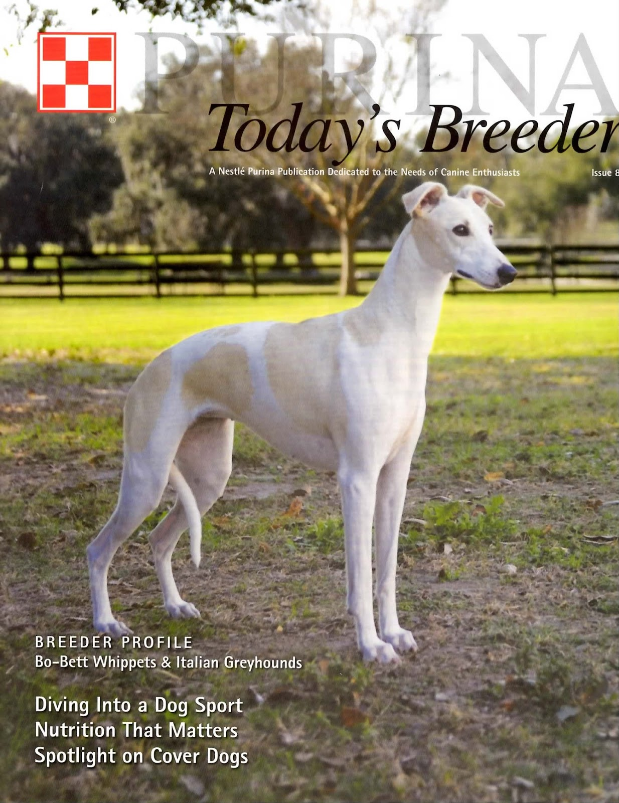Today's Breeder Magazine