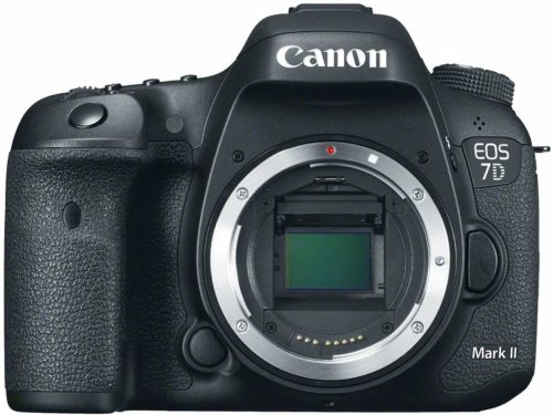Canon EOS 7D Mark II - Cameras for Fashion Photography
