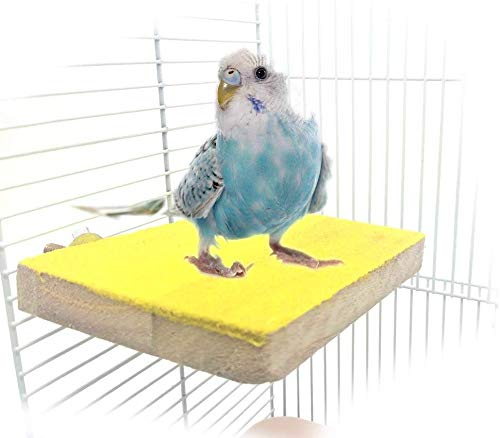 Colorful Bird Perch Stand Platform Natural Wood Playground Paw Grinding Clean for Pet Parrot Budgies Parakeet Cockatiels Conure Lovebirds Rat Mouse Cage Accessories Exercise Toys