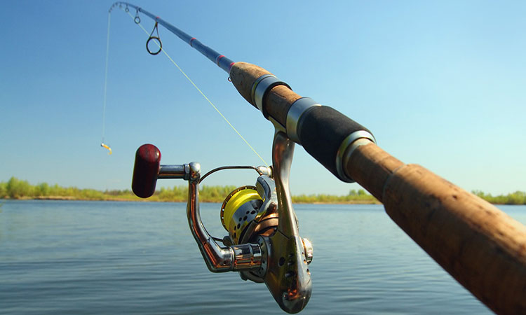 Telescoping Fishing Rods