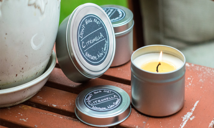Best Mosquito Repellent Candles